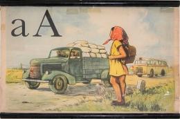 Serie - Živá abeceda