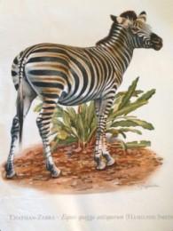 Serie - Cramers biologische wandplaten - Serie 16. Zoogdieren III