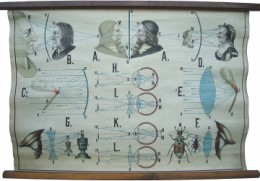 Serie - Meinhold's physikalische Wandbilder