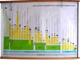 Serie - Van Goor's wandplaat voor de mammoetwet