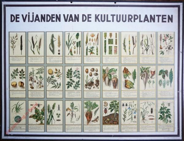 De Vijanden van de Kultuurplanten