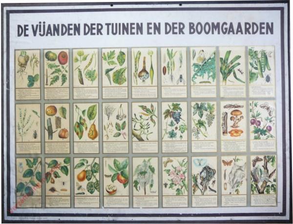 De Vijanden der Tuinen en de Boomgaarden