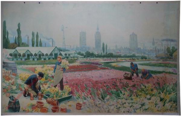 Gand et l'horticulture. Gent en tuinbouw.