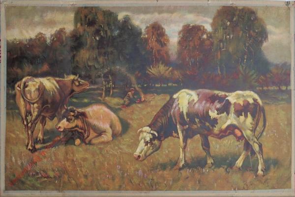 1 - Kravy