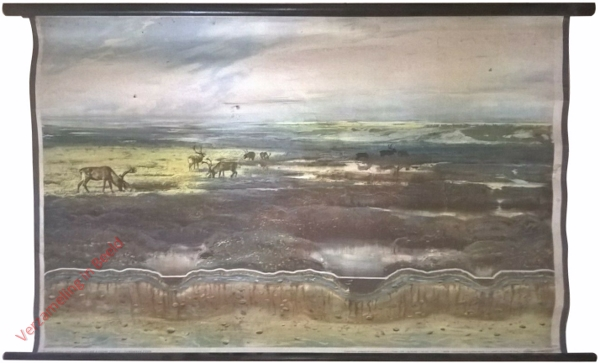 5 - Tundra