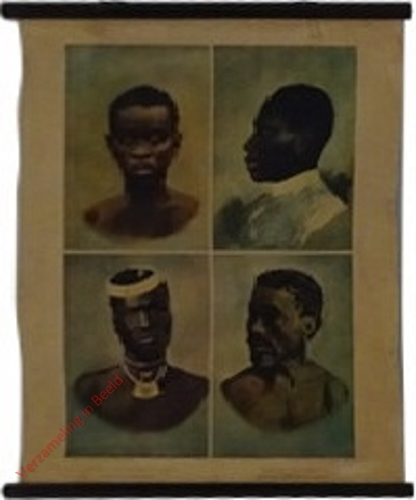 [African]