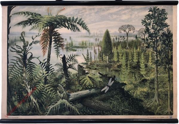 3 - Kamenouhelný prales, 1. vydání