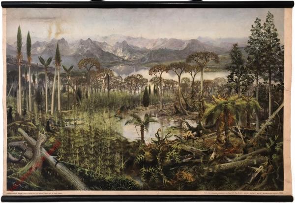 4 - Kamenouhelný prales, 2. vydání