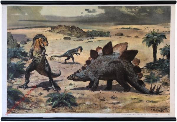 5 - Stegosaurus a Allosaurus (Antrodemus)