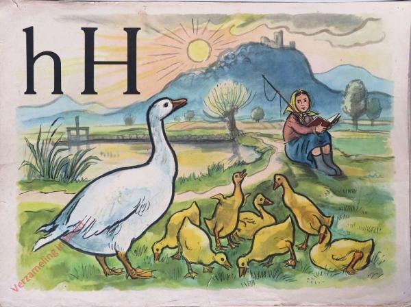 9 - h H