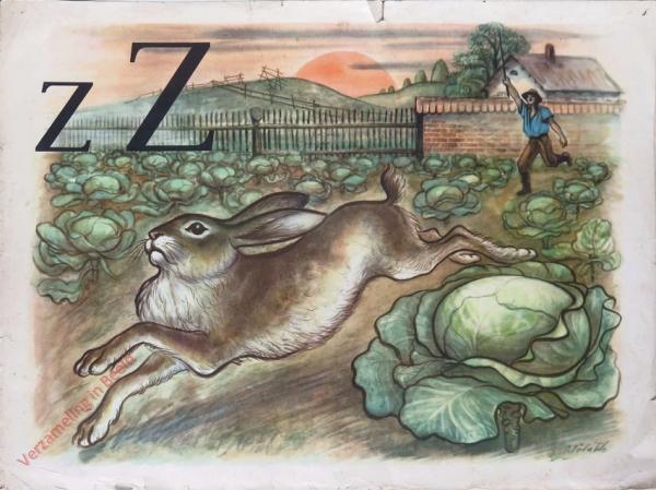26 - z Z