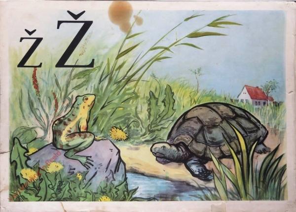 27 - ž Ž