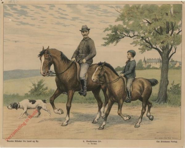 A. Husdyrenes Liv. 11 - Til hest