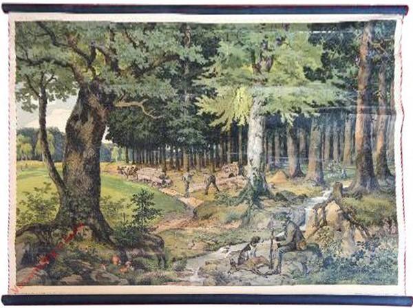 4 - Der Wald