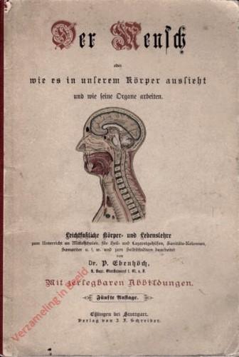 DU: 5e Auflage - Der Mensch. Oder wie es in unserem Körper aussieht und wie seine Organe arbeiten