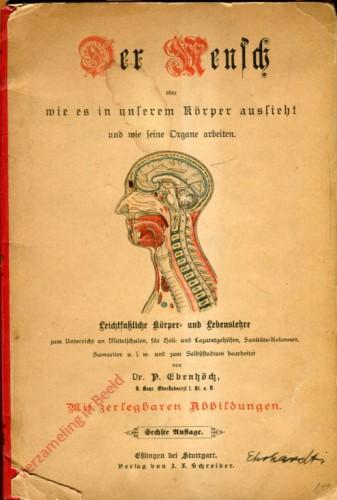 DU: 6e Auflage - Der Mensch. Oder wie es in unserem Körper aussieht und wie seine Organe arbeiten
