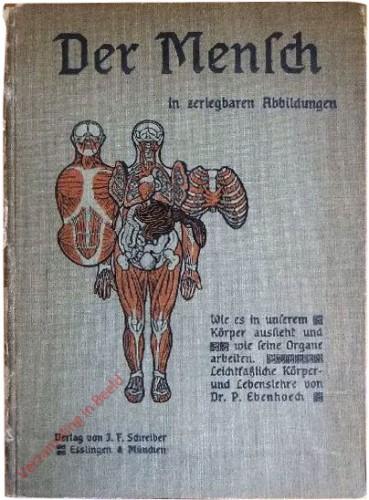 DU: 11e verbesserde Auflage - Der Mensch. Oder wie es in unserem Körper aussieht und wie seine Organe arbeiten