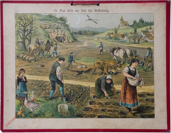 13 - Das Feld zur Zeit der Bestellung