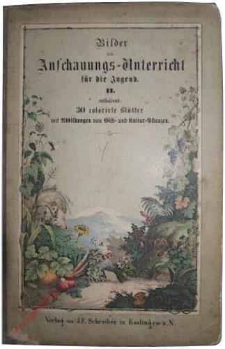 2. Auflage - Bilder zum Anschauungs-Unterricht für die Jugend. II. Enthaltend 30 colorirte Blätter mit Abbildungen von Gift- und