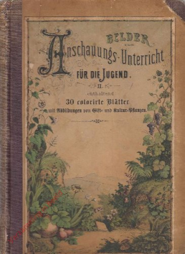 5. Auflage - Bilder zum Anschauungs-Unterricht für die Jugend. II. Enthaltend 30 colorirte Blätter mit Abbildungen von Gift- und