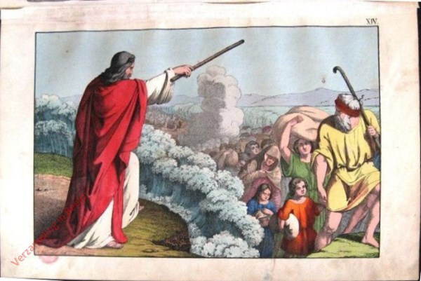 14 - [Vlucht uit Egypte, Mozes]