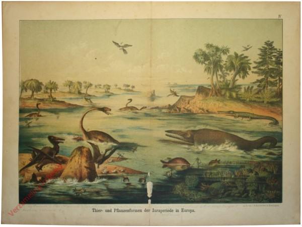 4 - Tier- und Pflanzenforen der Iuaraperiode in Deutschland