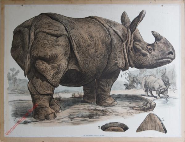 36 [2e druk] - Nashorn [Herschilderd]
