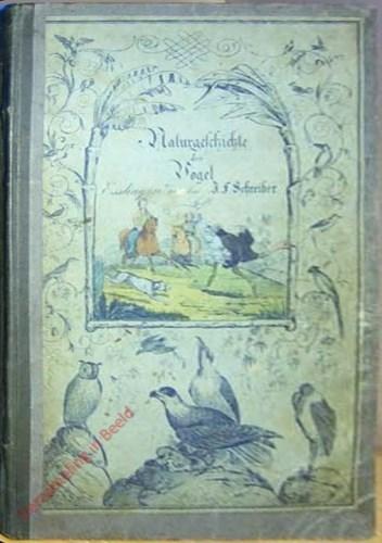1. Auflage - Dr. G.H. Schubert's Naturgeschichte der Vögel