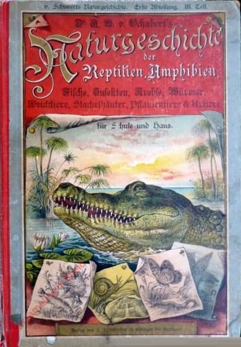 10. gänzlich neu bearbeitete und verbesserte Auflage - Dr. G.H. Schubert's Naturgeschichte der Reptilien, Amphibien, Fische, Ins