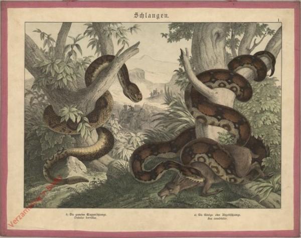I [1886] - Schlangen