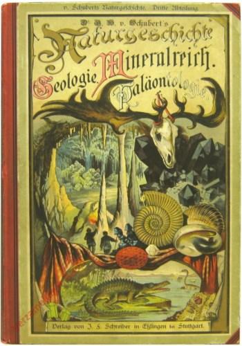 2. erbesserte Auflage [1885] - Dr. G.H. Schubert's Naturgeschichte Geologie, Mineralreich, Paläontologie