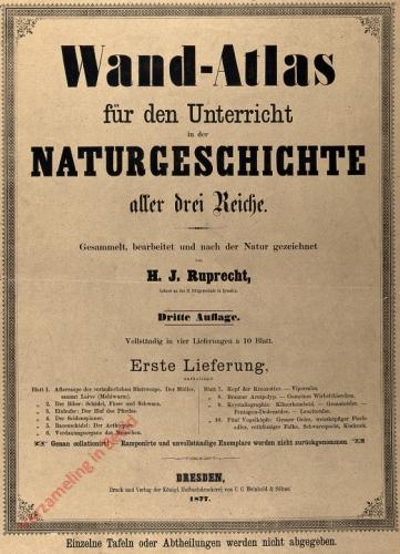 Wandatlas für den Unterricht in der Naturgeschichte aller drei Reiche. Erste Lieferung