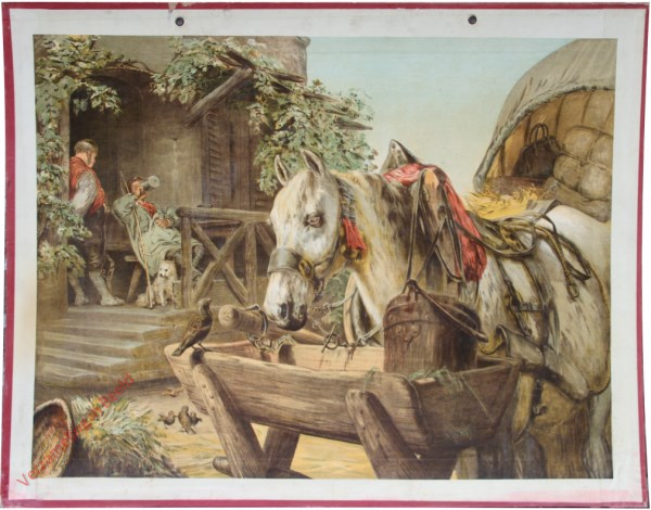 4 - Pferd und Sperling