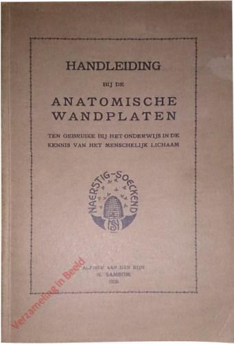 Handleiding bij de anatomische wandplaten