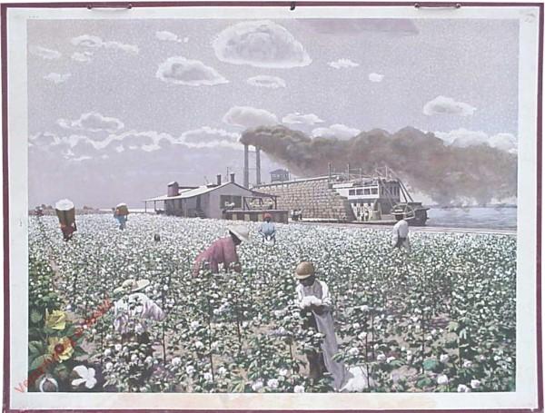 4 - Baumwolle [Herschilderd]