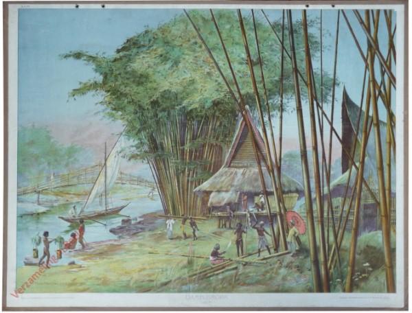 A.C. 15 - Bambusrohr (Java)