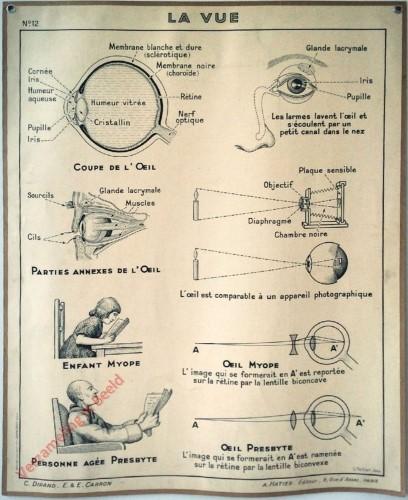 12 - La vue