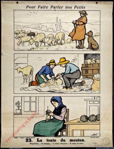 23 [2e série] - La tonte du mouton