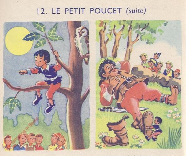 12 - Le petit Pouchet - II