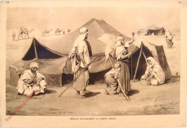 14 - Bedouin Encampment of North Africa