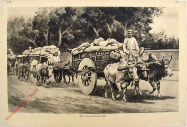 122 - Bullock Train in India
