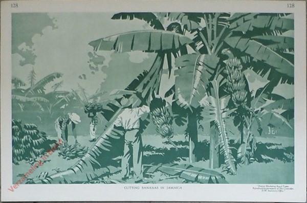128 - Cutting Bananas in Jamaica
