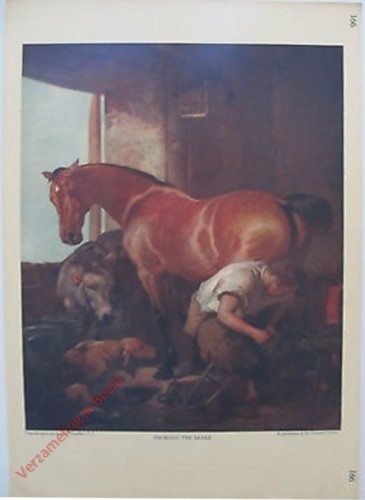 166 - Shoeing the Mare