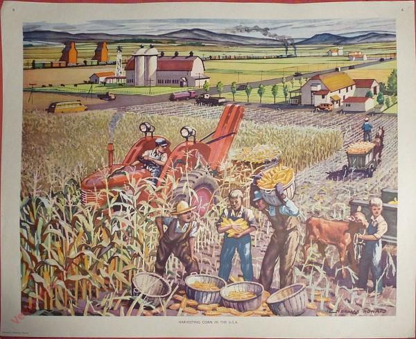 Set 1-6 - Harvesting corn In The USA