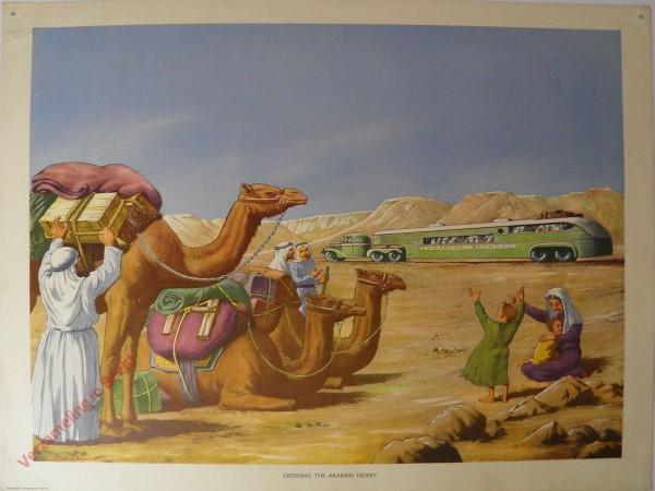Set 1-45 - Crossing the Arabian Desert - Camel