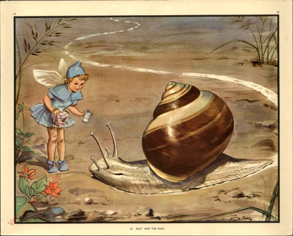 10 - Silky and the Snail