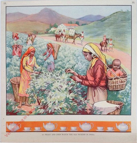 13 - Peggy and John Watch the Tea Picking in India