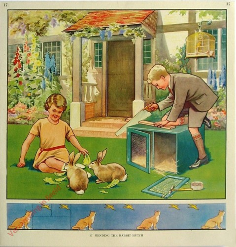 17 - Mending the Rabbit Hutch