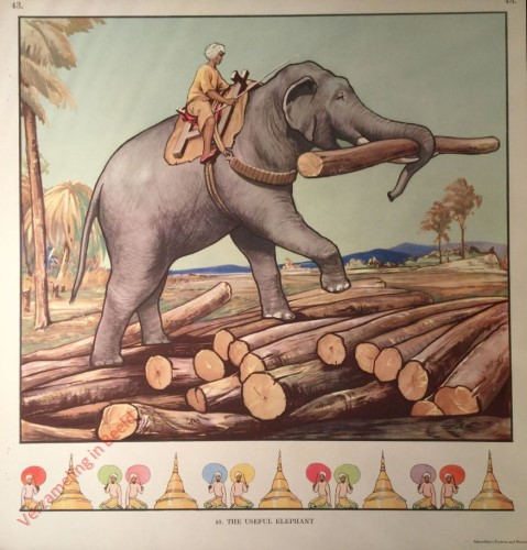 43 - The Useful Elephant