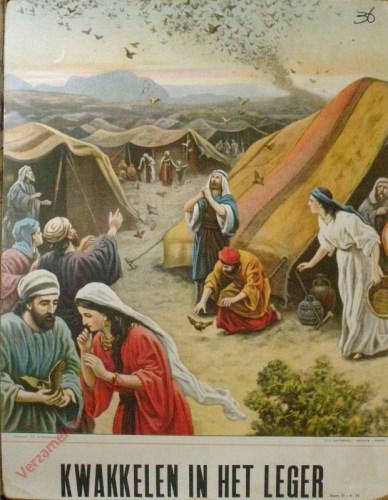 Kwakkelen in het leger (Num. 11 : 4 - 33)